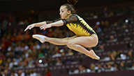 Gimnastica artistica